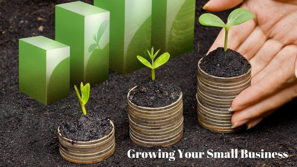 grows your small business